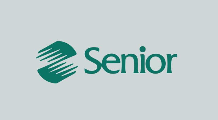 sistemas-senior